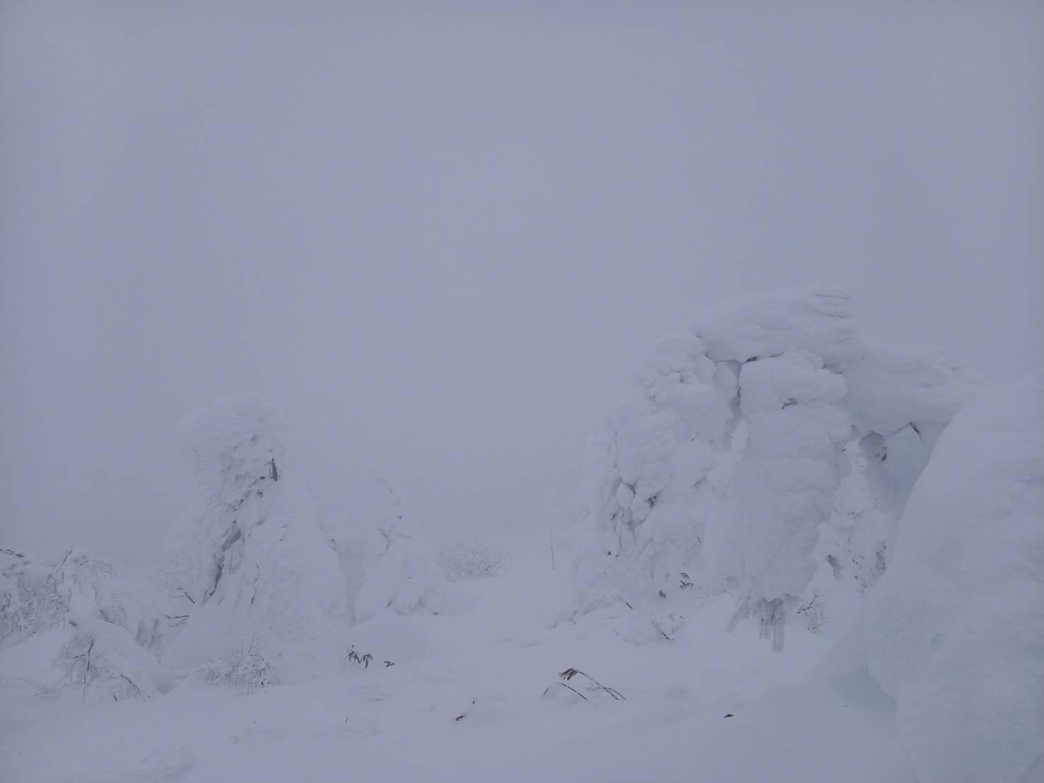 12月27日 樹氷の様子