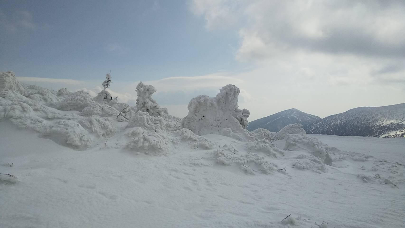 【重要】2/22現在 樹氷の状況